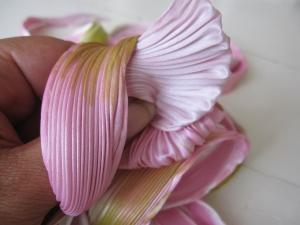 Shibori Spring Blossom 005